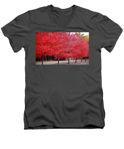 Red Tree Line Men's V-Neck T-Shirt