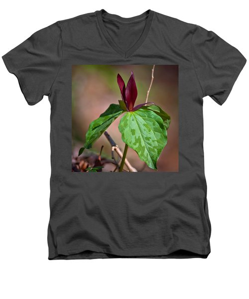 Red Trillium Men's V-Neck T-Shirt by Melinda Fawver
