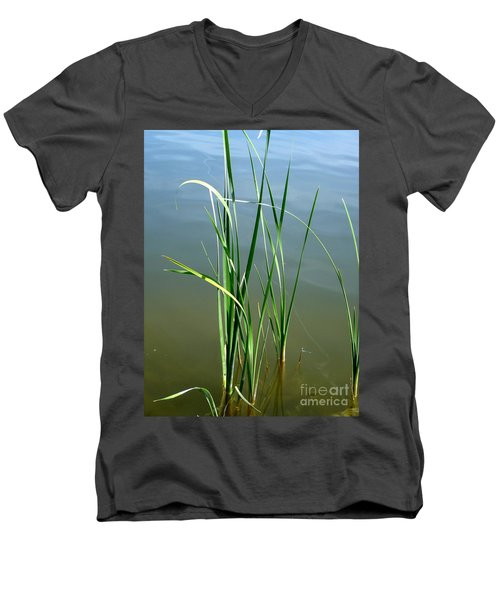 Reeds Men's V-Neck T-Shirt