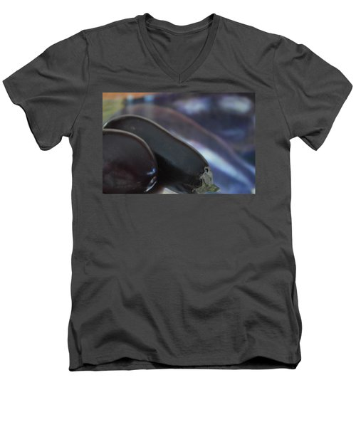 Reflections On An Ingredient Men's V-Neck T-Shirt