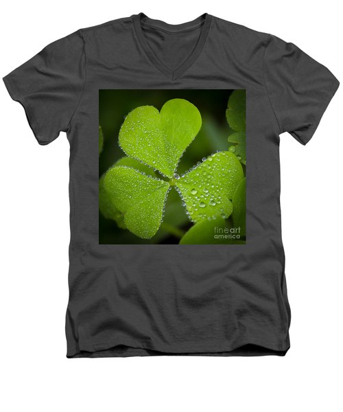 Refreshing Men's V-Neck T-Shirt