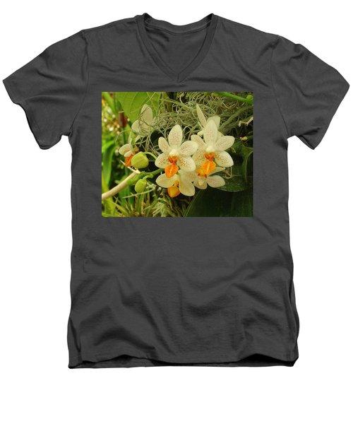 Renewal Men's V-Neck T-Shirt