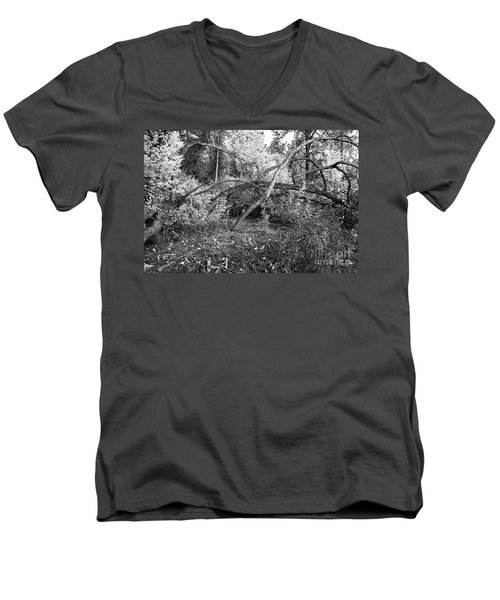 Men's V-Neck T-Shirt featuring the photograph Tropical Shade by Roselynne Broussard