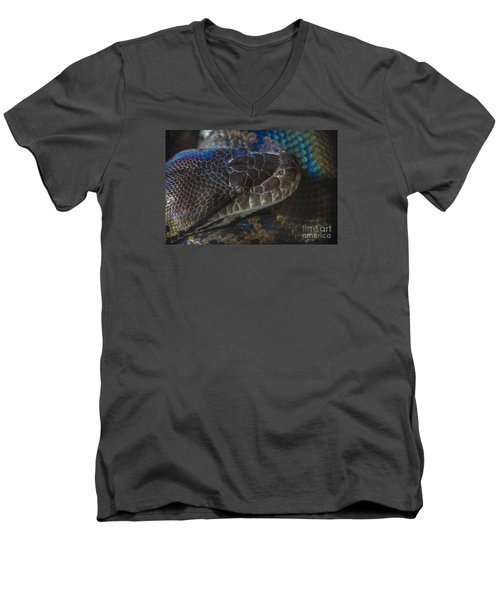 Reticulated Python With Rainbow Scales Men's V-Neck T-Shirt
