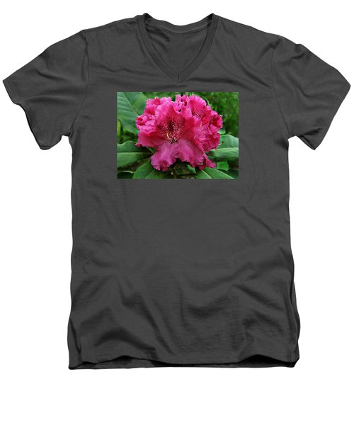 Rhododendron ' Bessie Howells ' Men's V-Neck T-Shirt