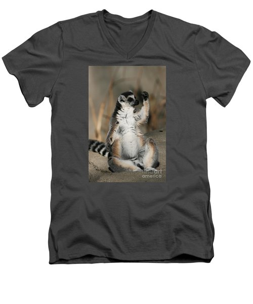 Men's V-Neck T-Shirt featuring the photograph Ring-tailed Lemur by Judy Whitton