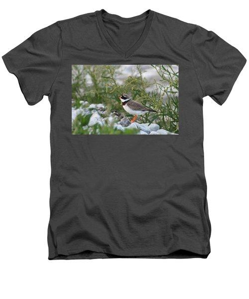 Ringed Plover On Rocky Shore Men's V-Neck T-Shirt