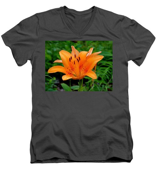 Rising Men's V-Neck T-Shirt by Rodney Lee Williams