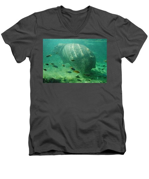 Men's V-Neck T-Shirt featuring the photograph River Horse by David Nicholls