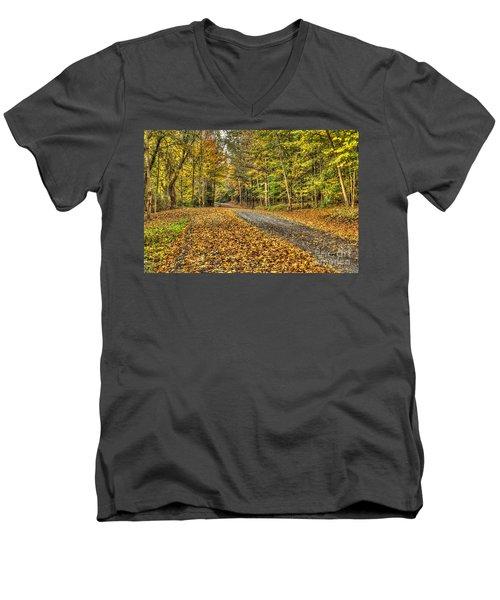 Road Into Woods Men's V-Neck T-Shirt