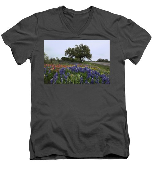 Roadside Splendor Men's V-Neck T-Shirt
