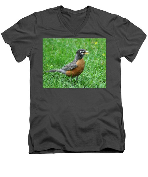 Robin 334 Men's V-Neck T-Shirt