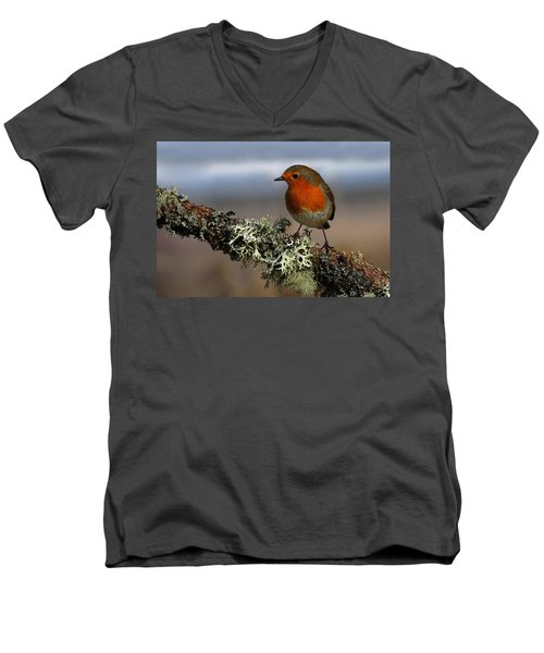 Robin Men's V-Neck T-Shirt