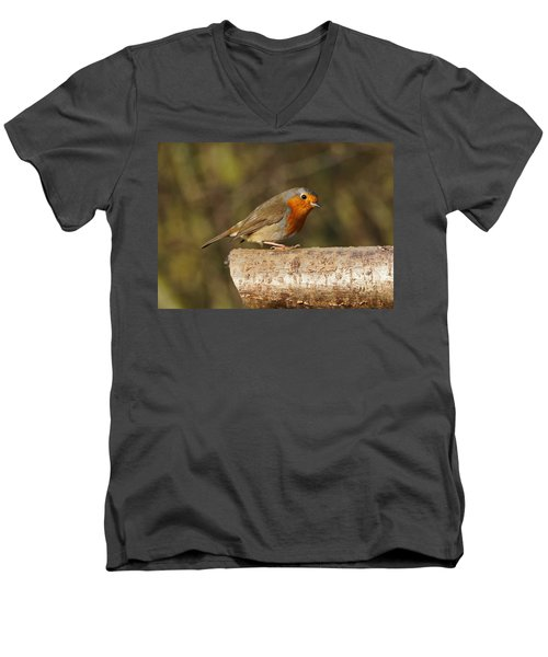 Robin On A Log Men's V-Neck T-Shirt