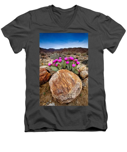 Rock And Beavertail Men's V-Neck T-Shirt