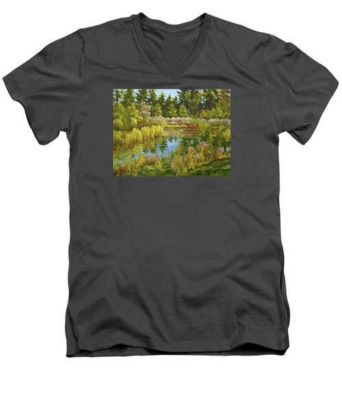 Rock Valley Pond Rockford Il Men's V-Neck T-Shirt by Alexandra Maria Ethlyn Cheshire