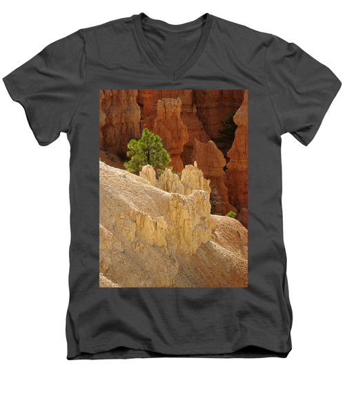Rocky Embrace Men's V-Neck T-Shirt