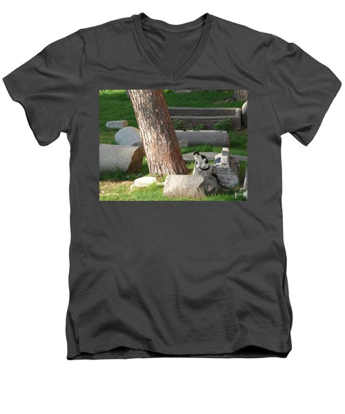 Men's V-Neck T-Shirt featuring the photograph Roman Beauty by Evelyn Tambour