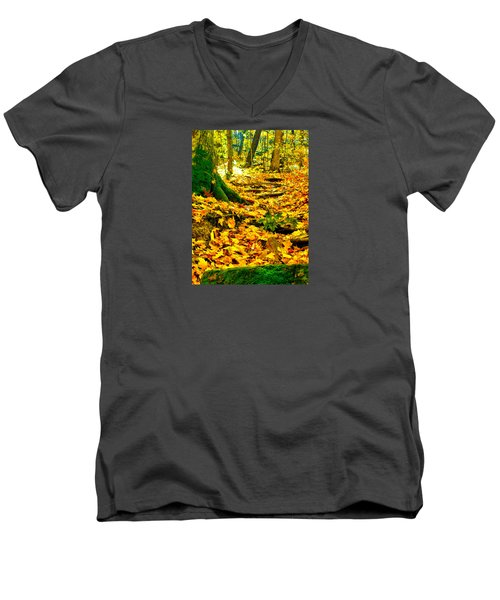 Men's V-Neck T-Shirt featuring the photograph Root Steps by Zafer Gurel