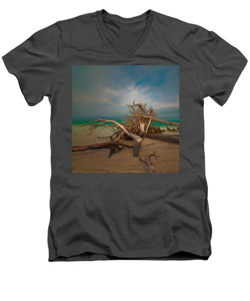 Roots 4 Men's V-Neck T-Shirt