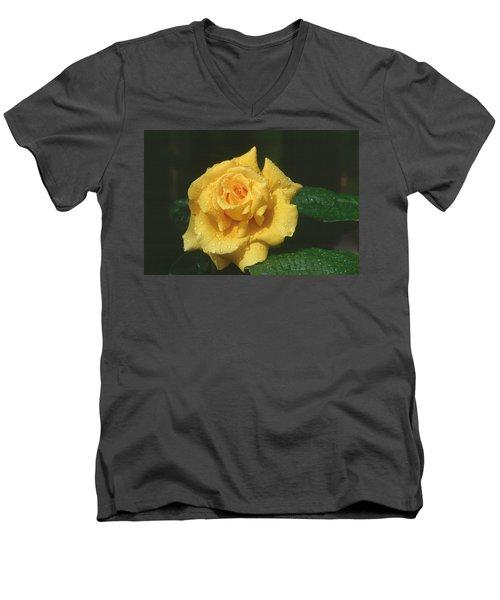 Rose 1 Men's V-Neck T-Shirt by Andy Shomock