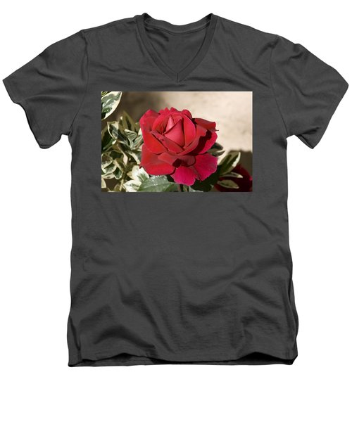 Rose 5 Men's V-Neck T-Shirt by Andy Shomock