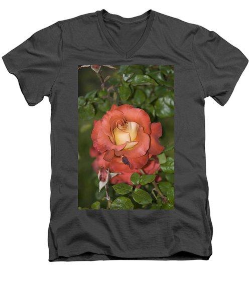Rose 6 Men's V-Neck T-Shirt by Andy Shomock
