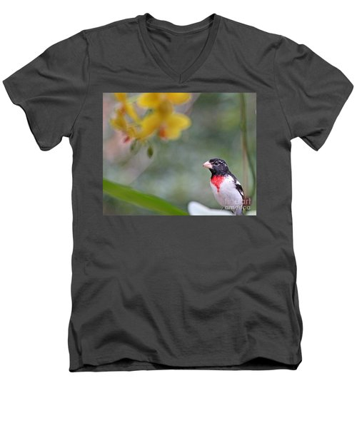 Men's V-Neck T-Shirt featuring the photograph Rose Breasted Grosbeak Photo by Luana K Perez