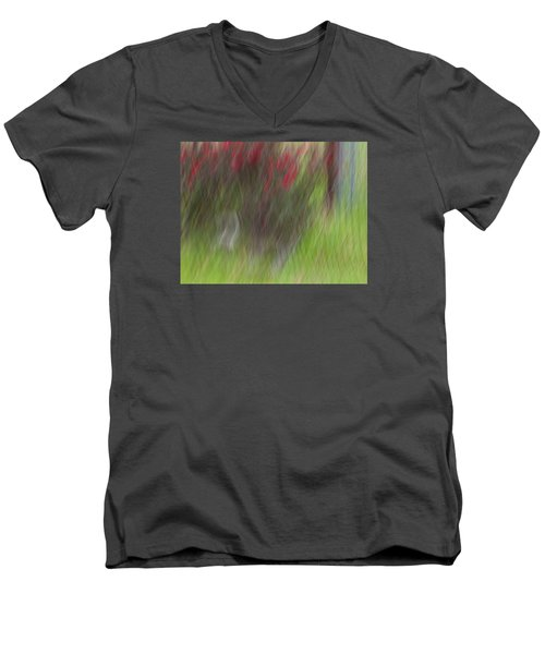 Roses Men's V-Neck T-Shirt by Mark Alder
