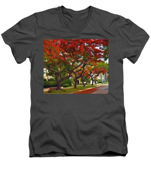 Royal Poinciana Trees In Blooming In South Florida Men's V-Neck T-Shirt