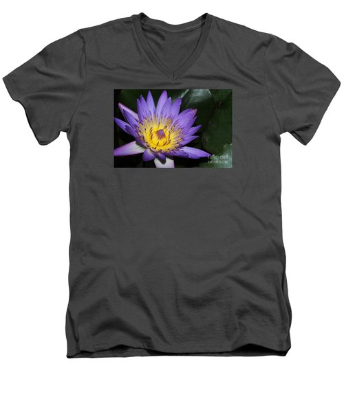 Royal Purple Water Lily #6 Men's V-Neck T-Shirt