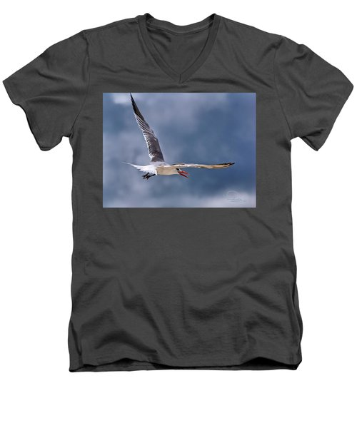 Men's V-Neck T-Shirt featuring the photograph Royal Tern 1 by Ludwig Keck