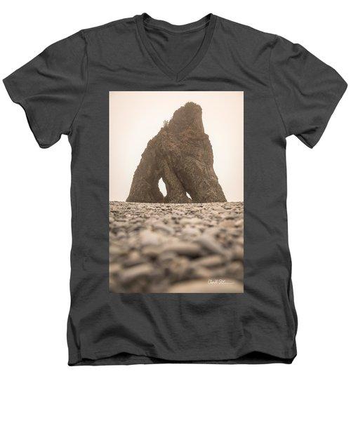 Ruby Beach Triangle Men's V-Neck T-Shirt