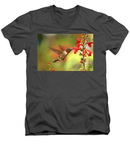 Ruby Throat Hummingbird Photo Men's V-Neck T-Shirt by Luana K Perez