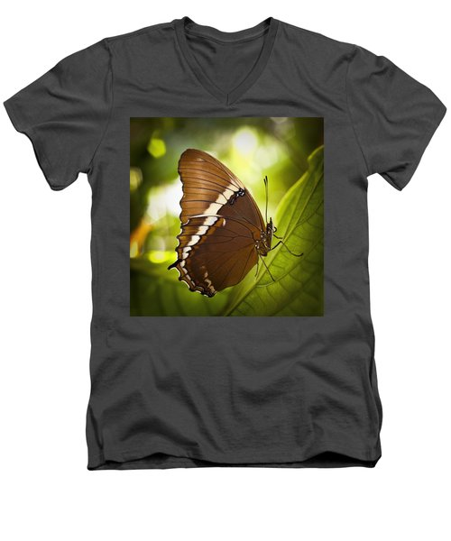 Men's V-Neck T-Shirt featuring the photograph Rusty Tip Butterfly by Bradley R Youngberg