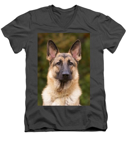 Sable German Shepherd Dog Men's V-Neck T-Shirt