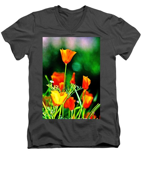 Sacramento Delta Poppies Men's V-Neck T-Shirt