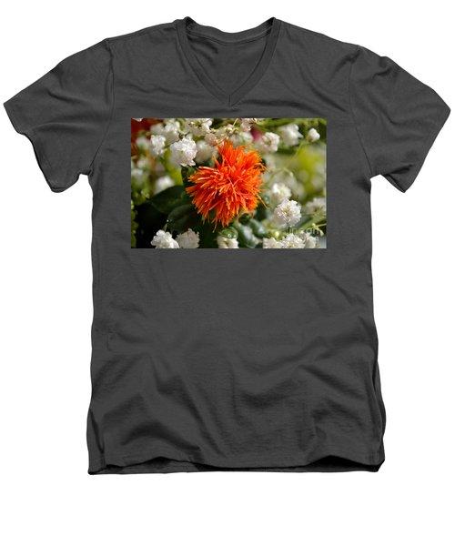 Safflower Amongst The Gypsophilia Men's V-Neck T-Shirt