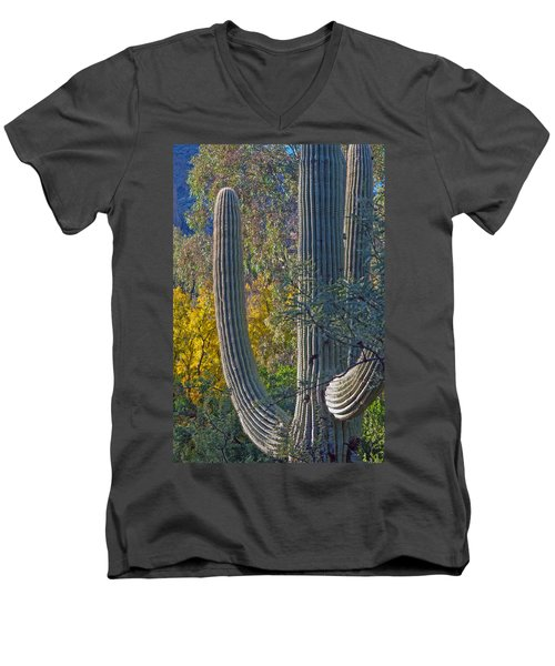 Saguaro Fall Color Men's V-Neck T-Shirt by Tam Ryan