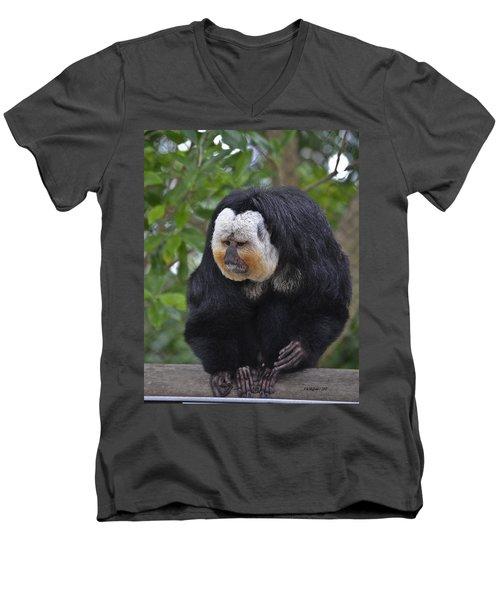 Saki Monkey Men's V-Neck T-Shirt