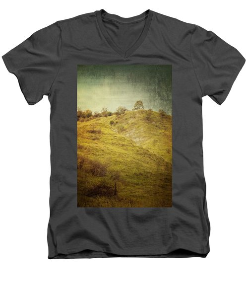 Salt Meadow Mounds Men's V-Neck T-Shirt