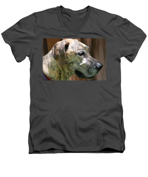Men's V-Neck T-Shirt featuring the photograph Sammy by Aimee L Maher Photography and Art Visit ALMGallerydotcom