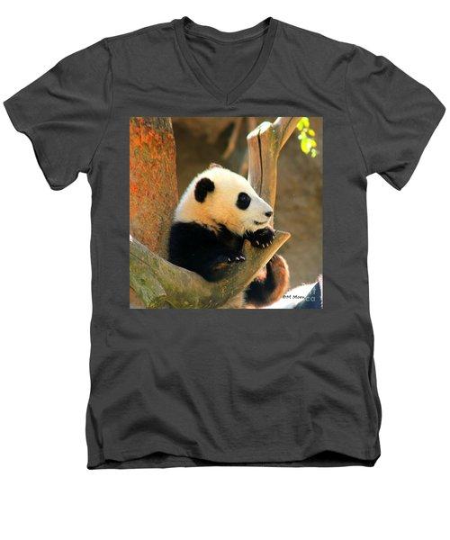 San Diego Zoo Panda Bear Xiao Liwu Men's V-Neck T-Shirt