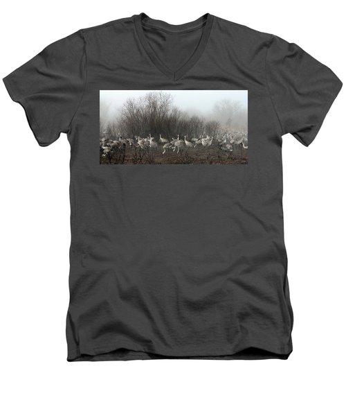 Sandhill Cranes In The Fog Men's V-Neck T-Shirt