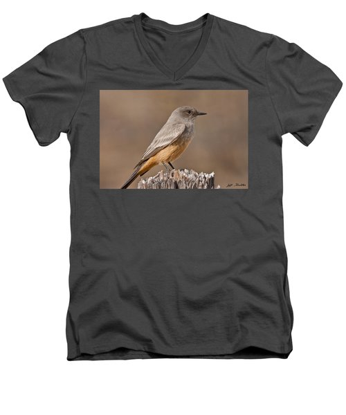 Say's Phoebe On A Fence Post Men's V-Neck T-Shirt