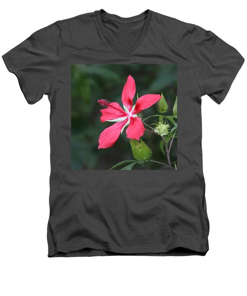 Scarlet Hibiscus #3 Men's V-Neck T-Shirt