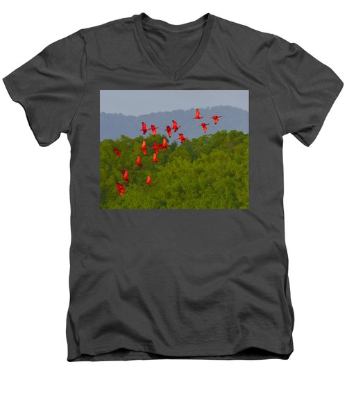 Scarlet Ibis Men's V-Neck T-Shirt by Tony Beck