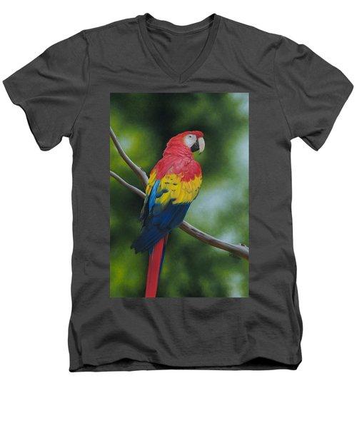 Scarlet Macaw Men's V-Neck T-Shirt