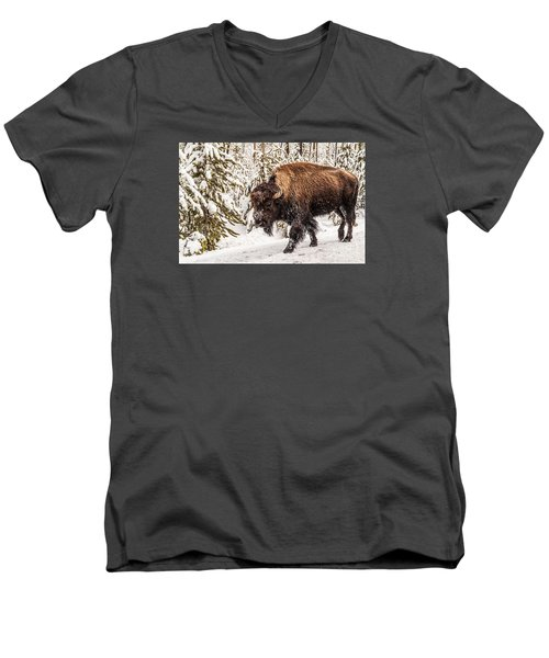 Scary Bison Men's V-Neck T-Shirt