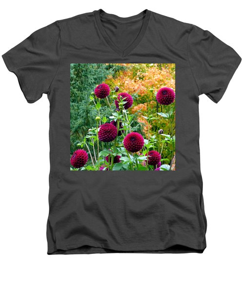 Scenic Minnesota 9 Men's V-Neck T-Shirt